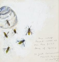 The wasp that woke up on the first day of Spring, St Just. March 2014. Mixed media on board.