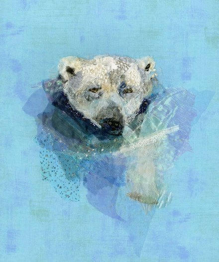 Polar Bear Swimming - Barbara Shaw